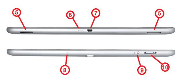 Верхняя и нижняя панели