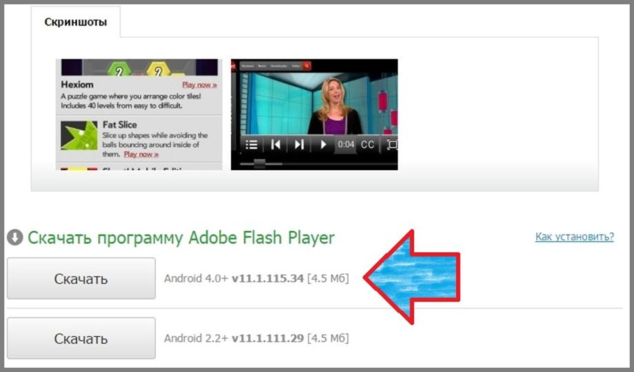 Программа Adobe Flash Player